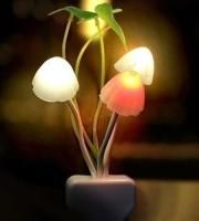 Mashroom Light